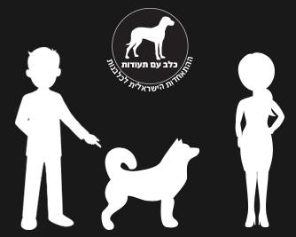 מספר כללים לרכישה נכונה של כלבים